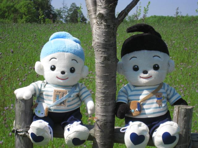 名古屋にお住まいのプリモプエル兄弟 プップ君&ポッポ君のお写真をおもちゃのジャンボにいただきました。